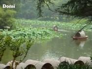 La Chine sac au dos (26) - Sur la route des anciennes capitales: Nanjing (南京) Domi2613