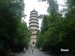 La Chine sac au dos (26) - Sur la route des anciennes capitales: Nanjing (南京) Domi2633