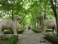 La Chine sac au dos (26) - Sur la route des anciennes capitales: Nanjing (南京) Domi2636