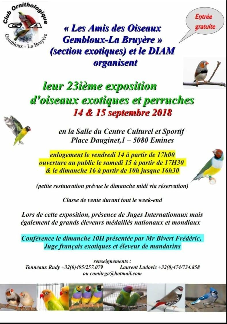 DIAM show, Emines le 14 et 15 septembre 2018 Diam2010