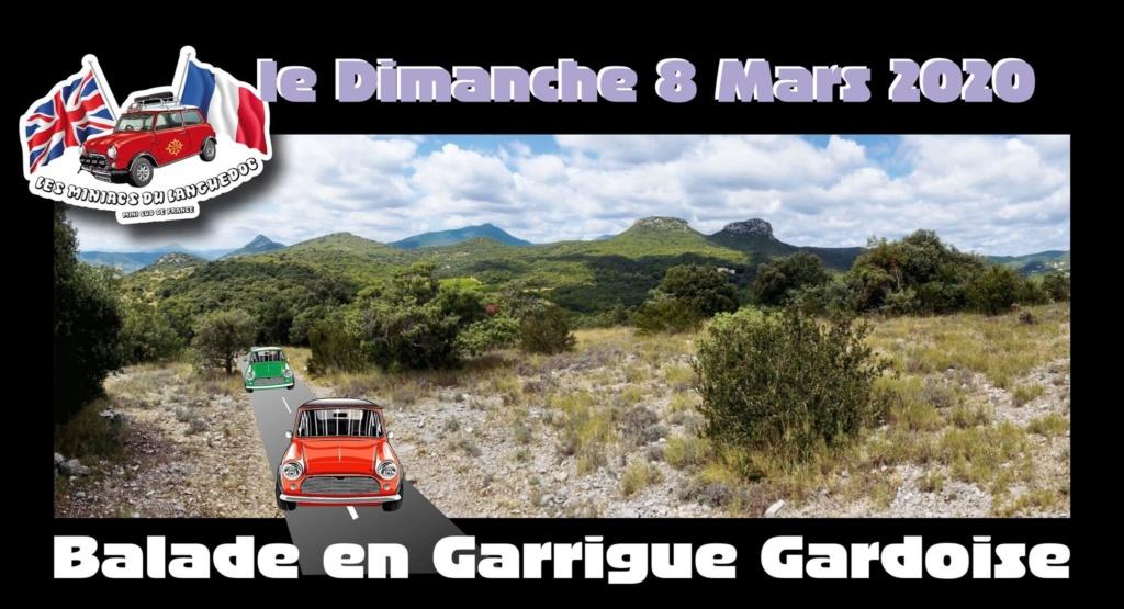 Balade en Garrigues Gardoise  Dimanche 8 Mars 2020 A_garr10
