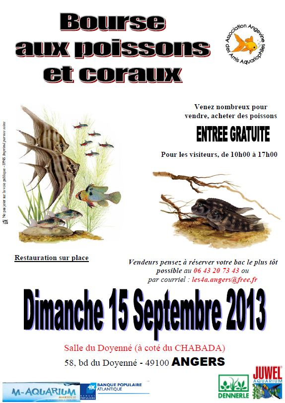 Bourse Angers 15/09 Bourse10