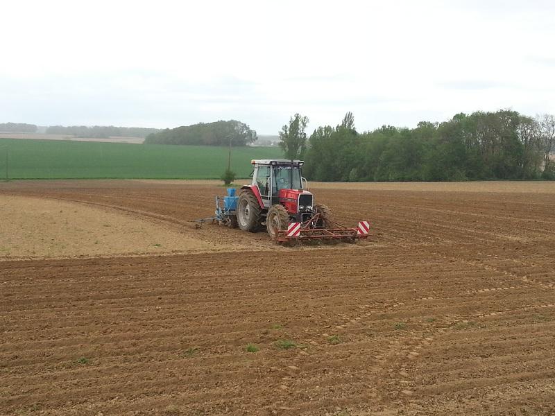 semis de maïs 2013  20130514