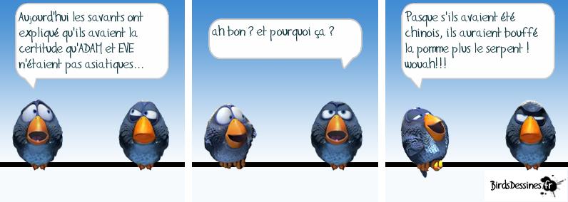 Les Birds - Page 5 13601010