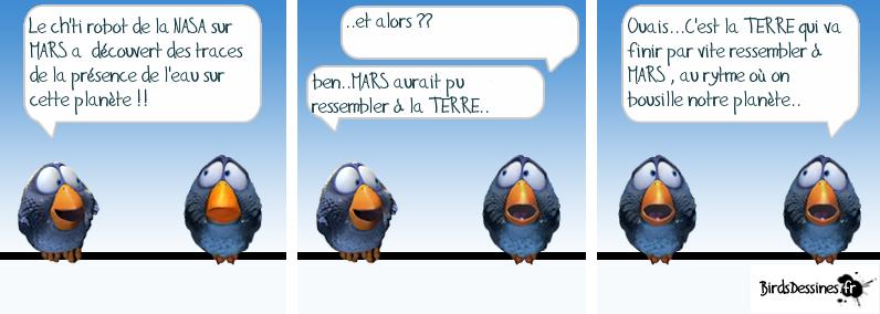 Les Birds - Page 5 13707110