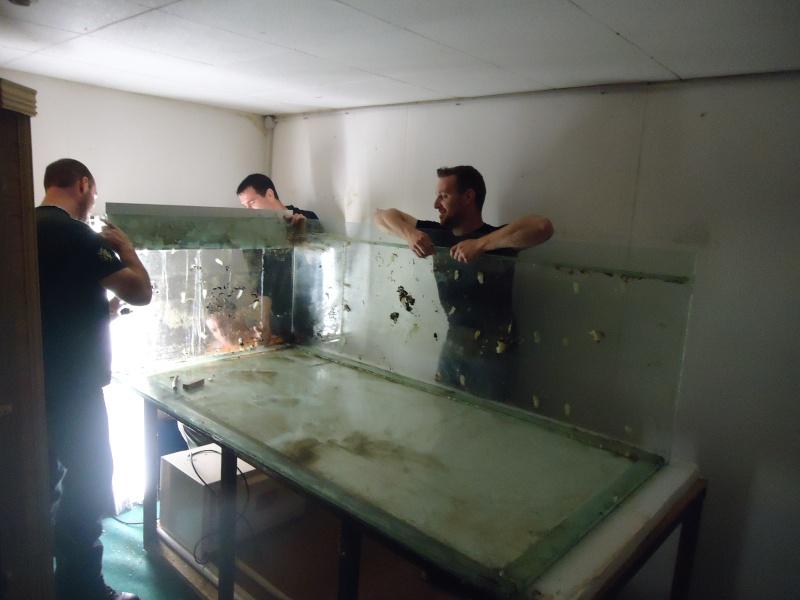 ACTIVITES CLUB AQUARIOPHILE DE PLOUESCAT 1210