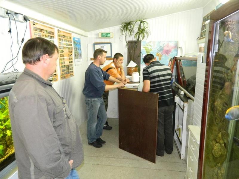 ACTIVITES CLUB AQUARIOPHILE DE PLOUESCAT 611