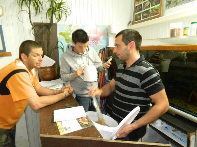 ACTIVITES CLUB AQUARIOPHILE DE PLOUESCAT 911
