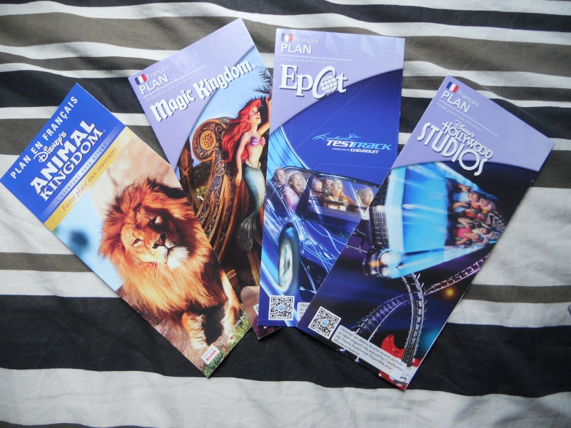Commander les brochures des Resorts Disney - Page 14 Dscn7211