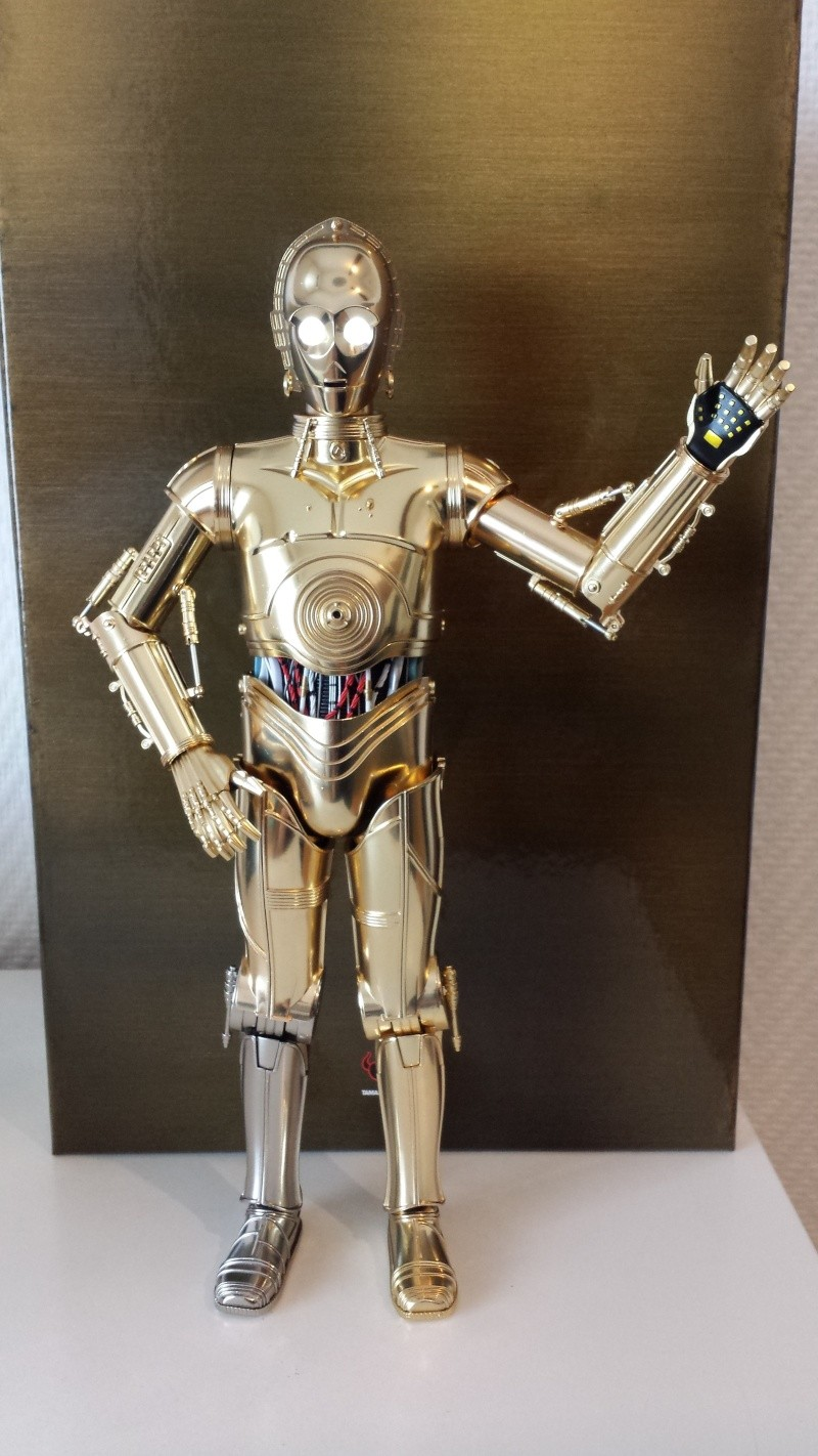 STAR WARS - C3PO - Perfect Model (TAMASHII AND SIDESHOW PERFECT CHOGOKIN) 20130625