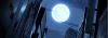 [Forum de RP] Igura Game Parten10