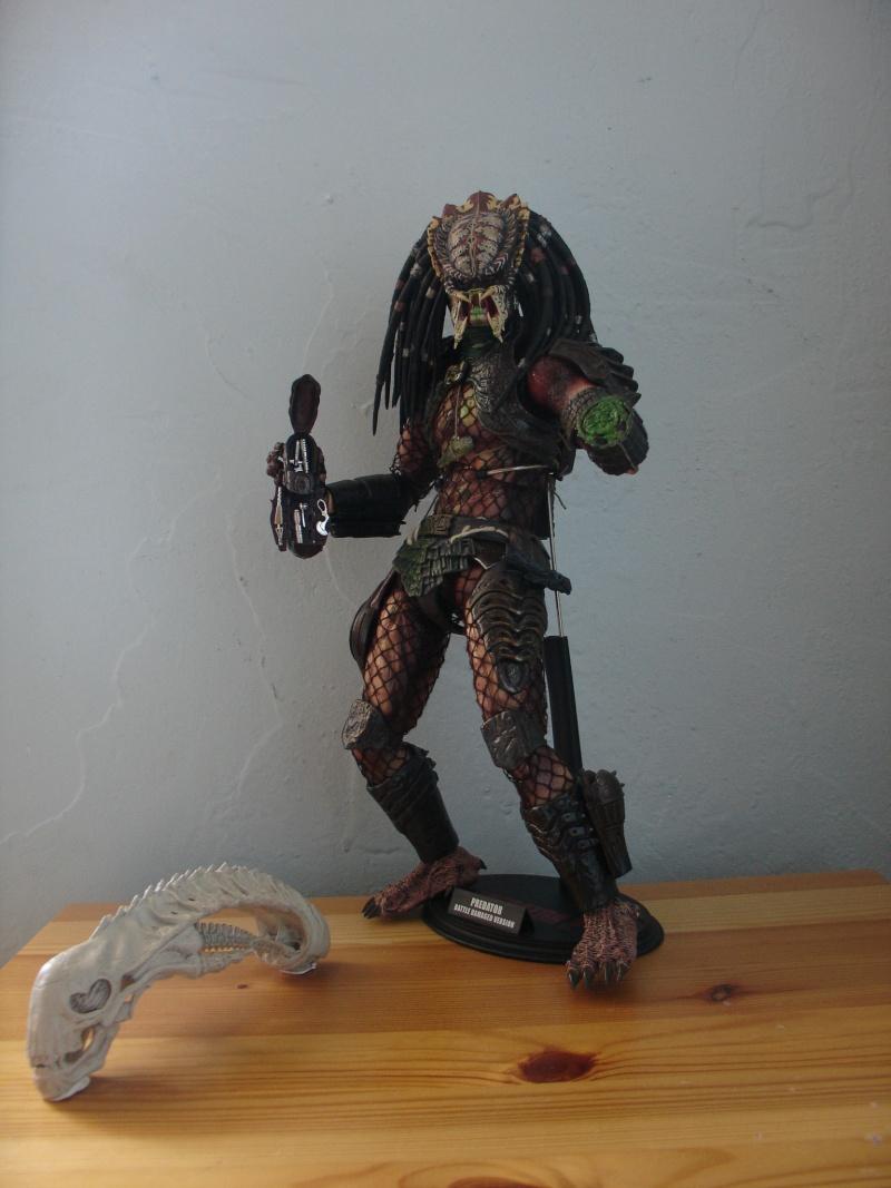 N°2 - Collection d'Endoskeleton38 Dsc06721