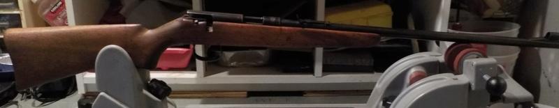 recherche firing pin anschutz 1383 22LR Dscn0112