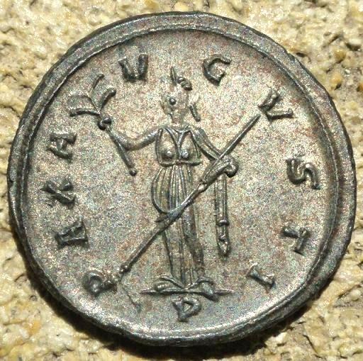 carus - Tacite, Florien, Carus, Numérien, Carin Dsc01913