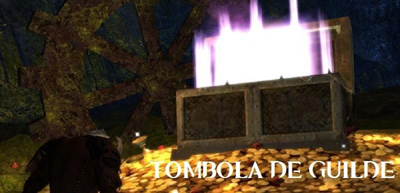[07 MAI-12 MAI] Tombola de guilde Tombol10