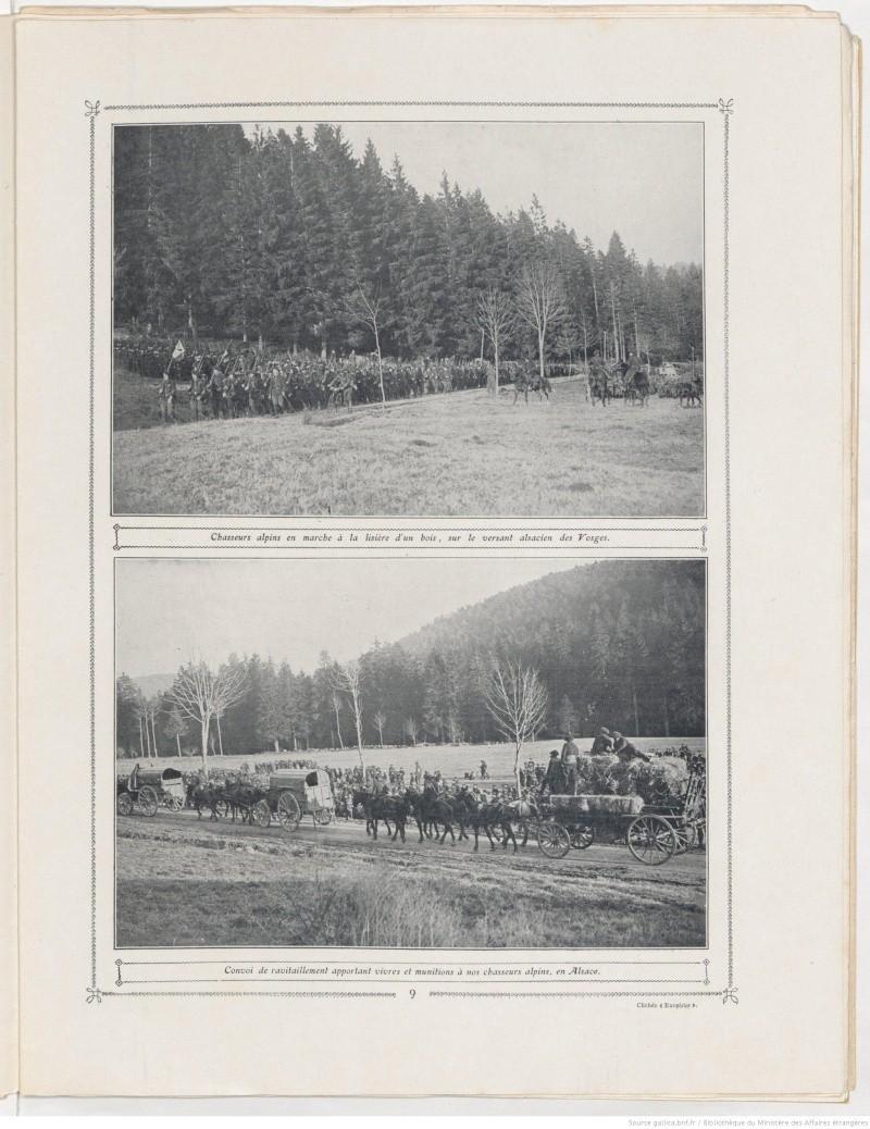 Le front en Alsace entre 1914 et 1918 N6465110