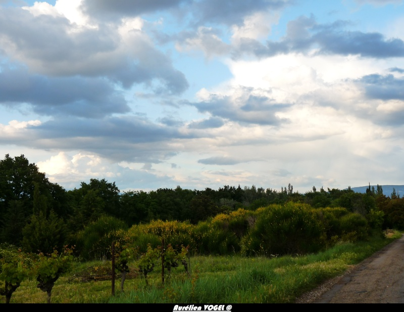 Saison orageuse 2013 dans le 84 P1110725
