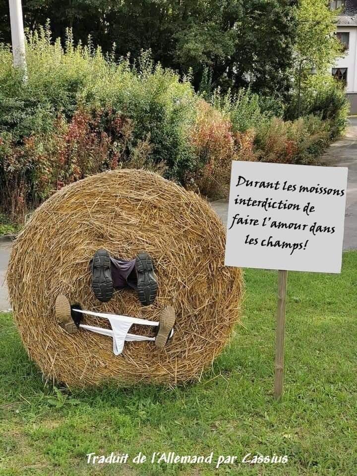 Humour du jour - Page 35 86733610