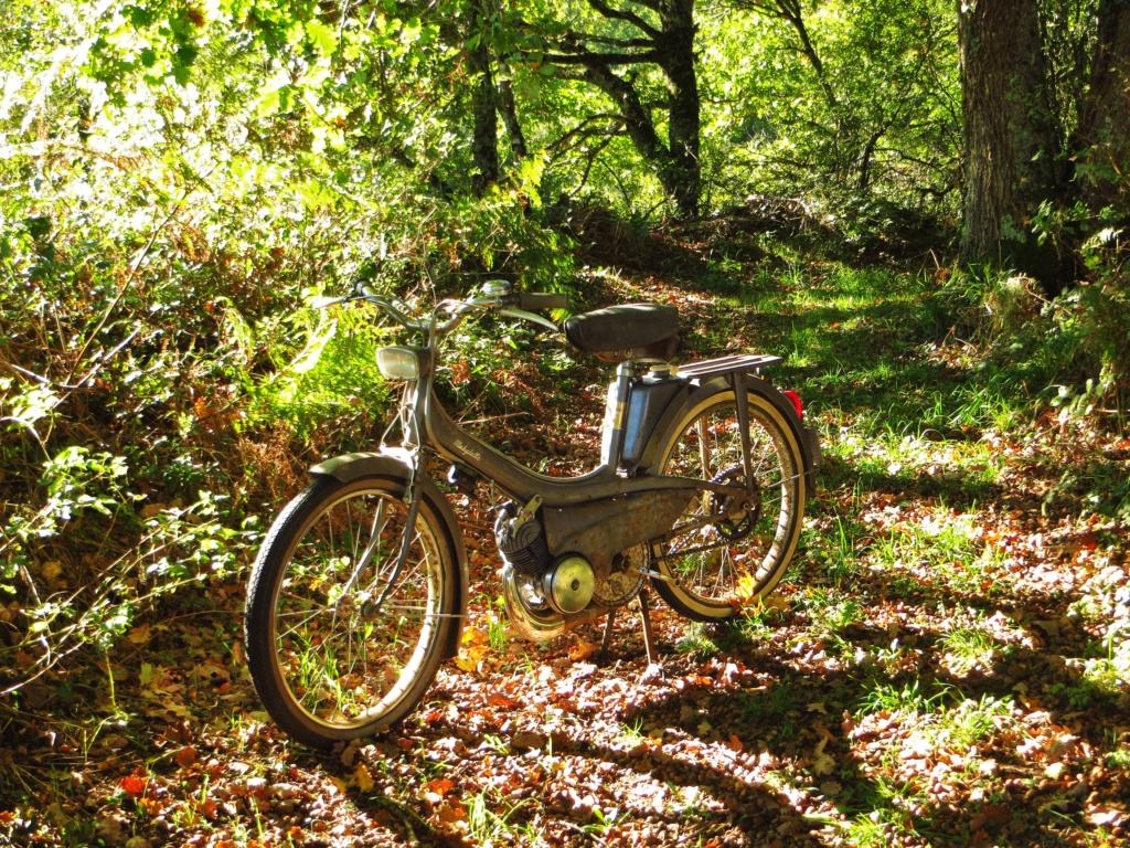 Daniel S le Vendéen et ses cyclos Img_2510