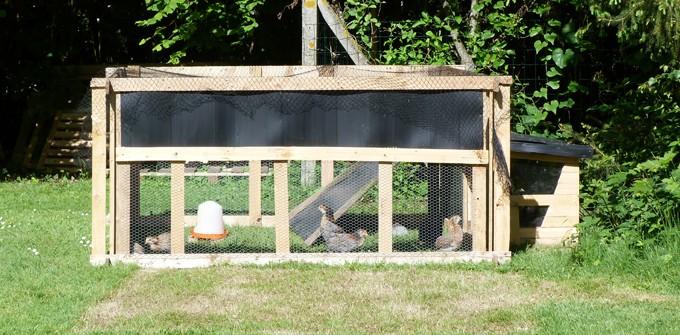 L'élevage des jeunes (2 mois au moins), parcs et poulaillers ! - Page 2 P1090326