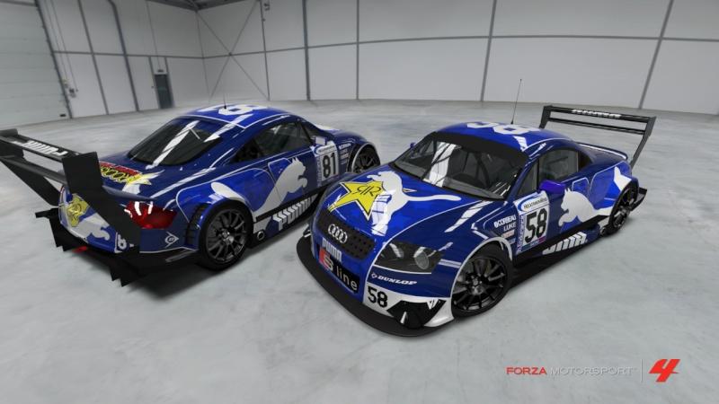 [ENDURANCE]AUDI TT Germany Race Info & dubbi Puma10