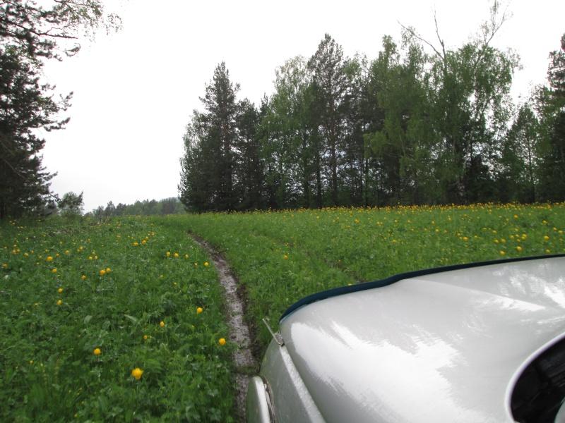 Окрестности деревни Верхний Катав Img_1222