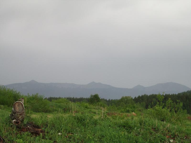 Окрестности деревни Верхний Катав Img_1315