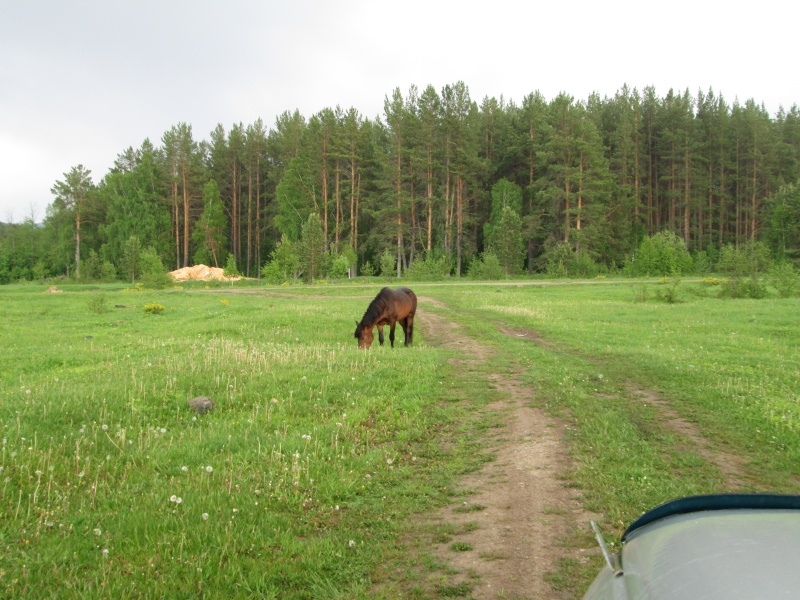 Окрестности деревни Верхний Катав Img_1320