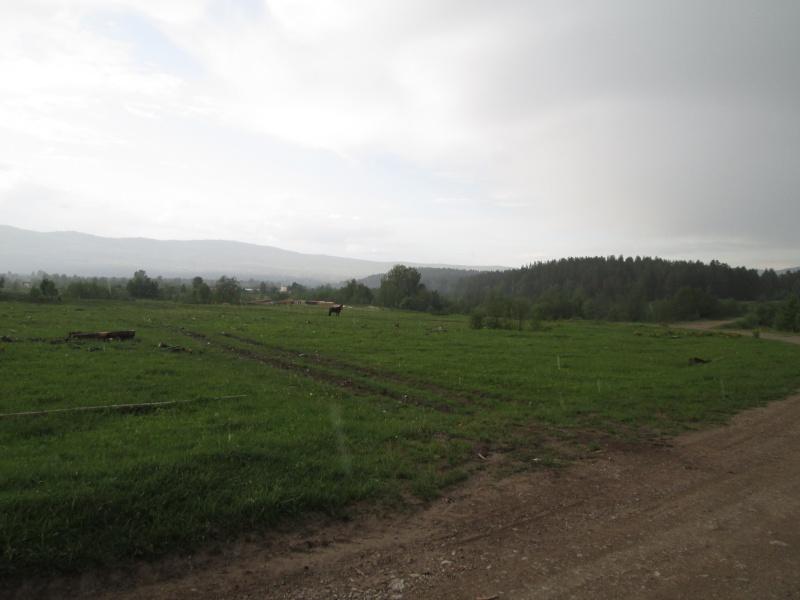 Окрестности деревни Верхний Катав Img_1325