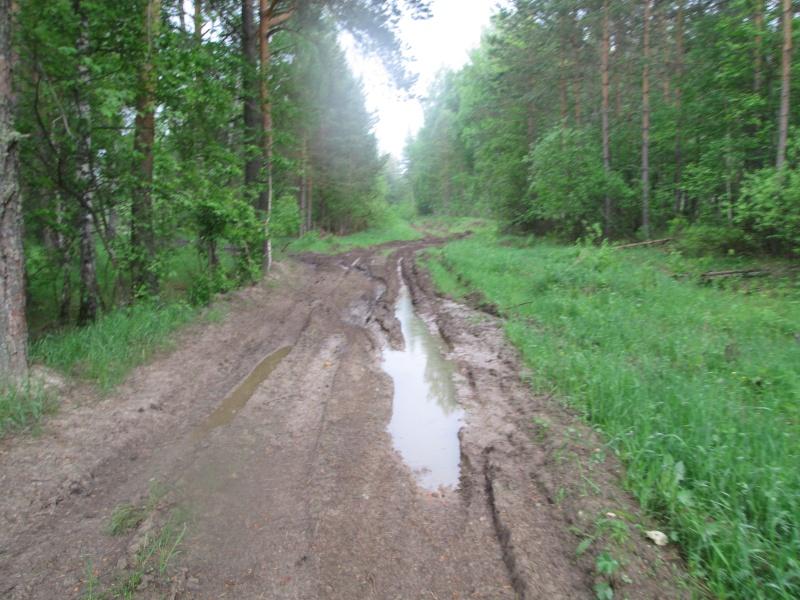 Окрестности деревни Верхний Катав Img_1331