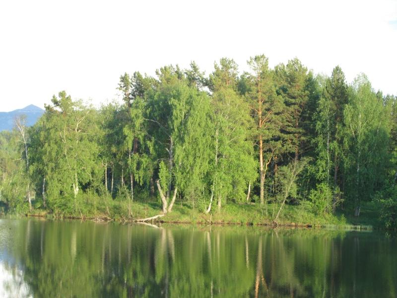 Окрестности деревни Верхний Катав Img_1367