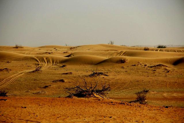 Dubai-Wüste 9sceox11