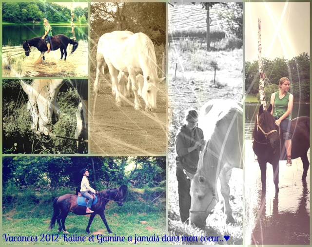Montages Photos  - Page 3 Kaline10
