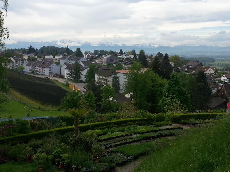 Zurich Switzerland Zurich18