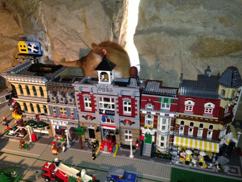My Lego City - Page 3 Img_0310