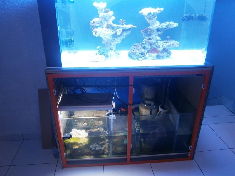 Aqua acrylique 420 L - Page 4 P4220010