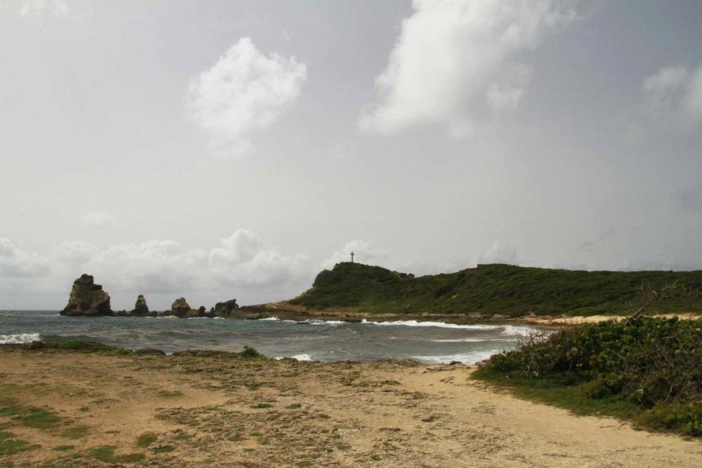 Balade en Guadeloupe Img_7722