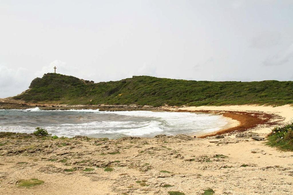 Balade en Guadeloupe Img_7724