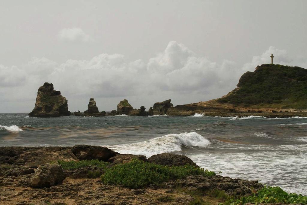 Balade en Guadeloupe Img_7725