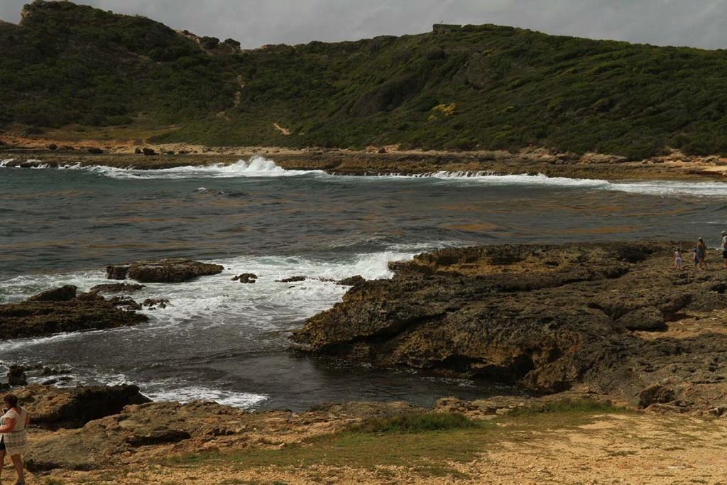 Balade en Guadeloupe Img_7727