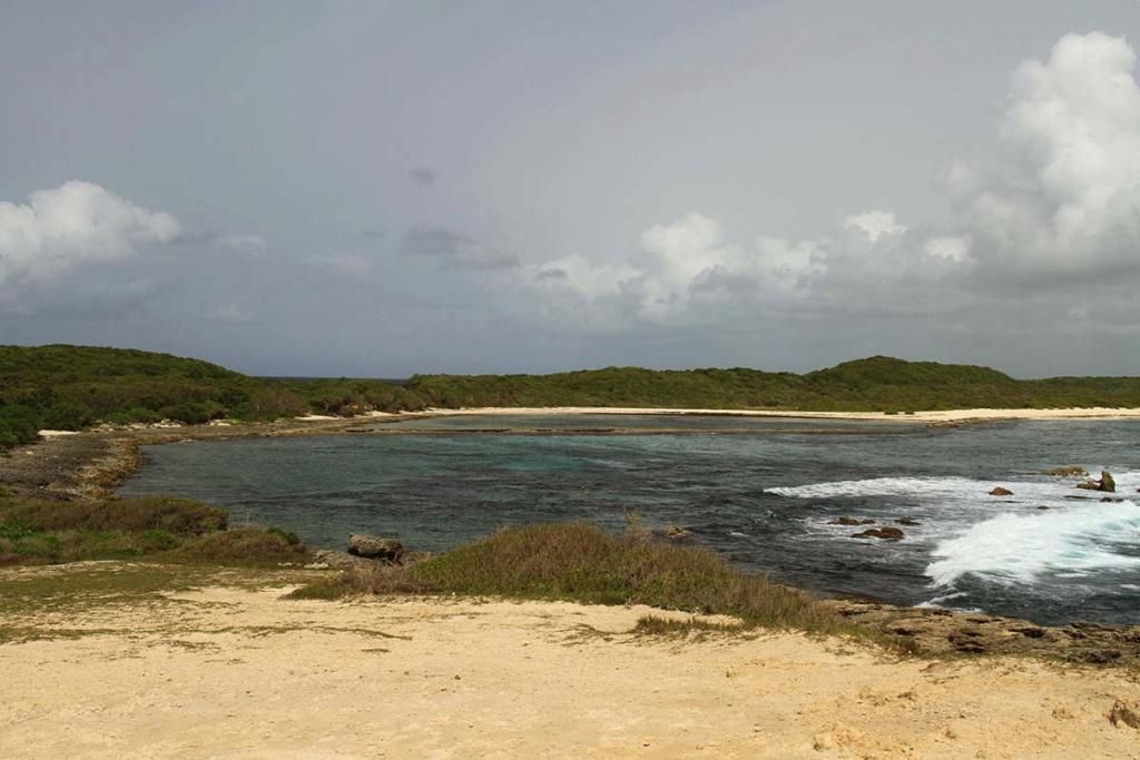 Balade en Guadeloupe Img_7819