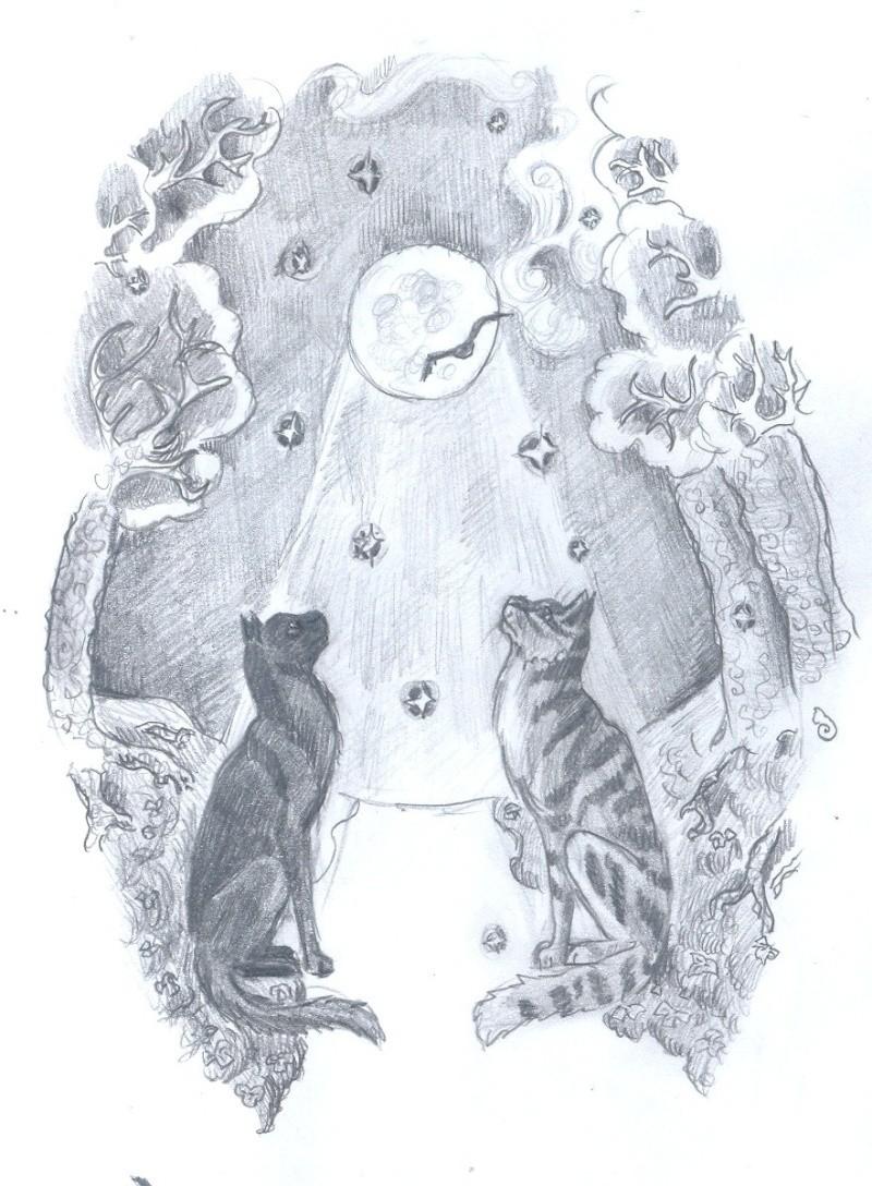 кошки в карандаше 210