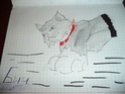 Рисунки кв Dsc00312