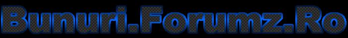 cerere logo Bunuri10