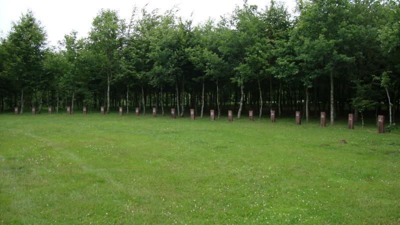 les Ardennes Belges 11310