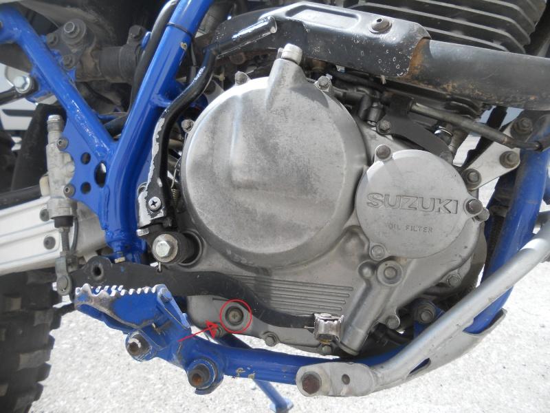 dubbi su quantità olio motore Dscn3510