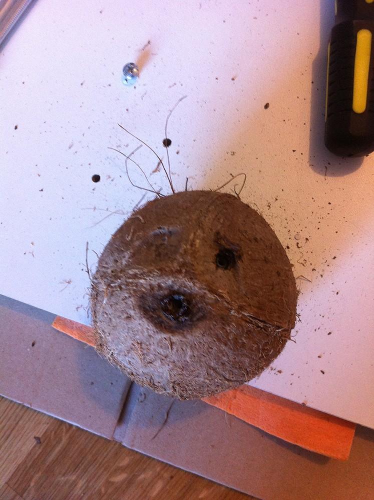 Mode d'emploi pour faire une joli cachette en noix de coco Img_3111