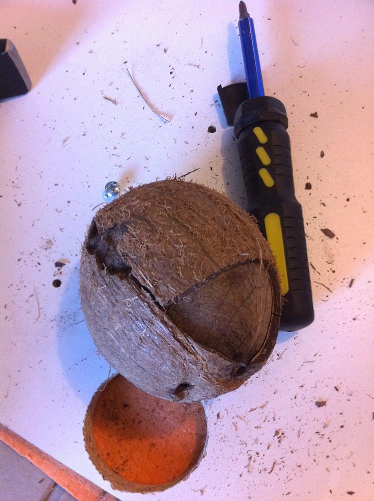 Mode d'emploi pour faire une joli cachette en noix de coco Img_3113