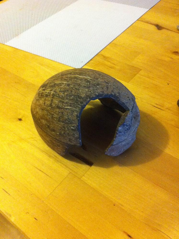 Mode d'emploi pour faire une joli cachette en noix de coco Img_3118