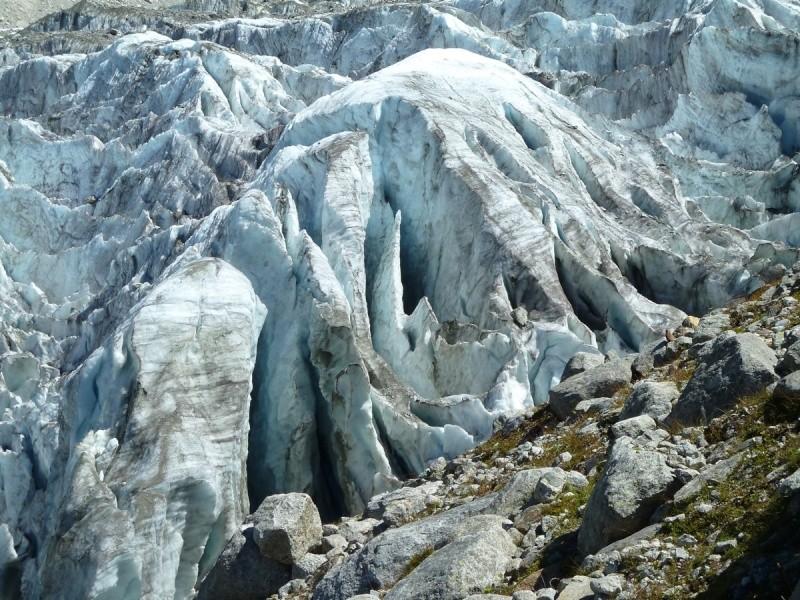 Point de vue du glacier d'Argentière 33311